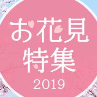 春の訪れを楽しむ!お花見特集2019