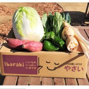 茨城産・自慢の冬のお野菜セット